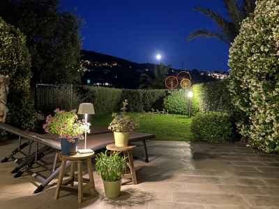 Garden with full moon and suggestive lighting