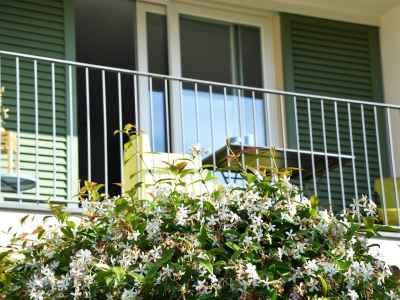 Terrace with fragrant jasmine flowers